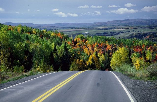 autumn_road_1