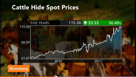 cattle_spot_prices