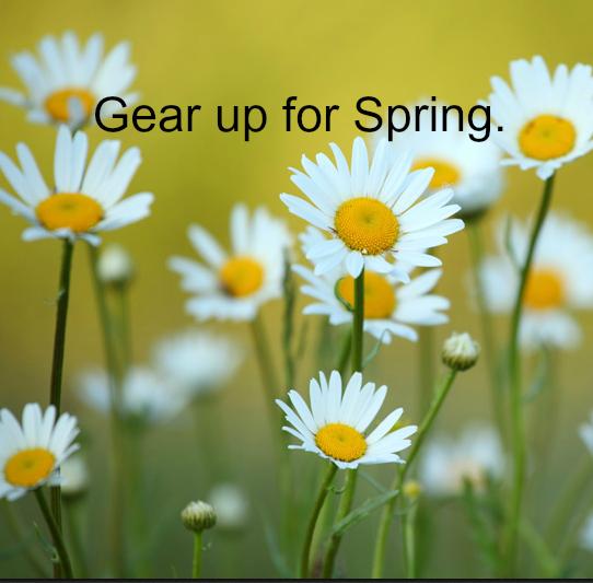 spring_Screen_shot_2014-02-18_at_10.45.04_PM
